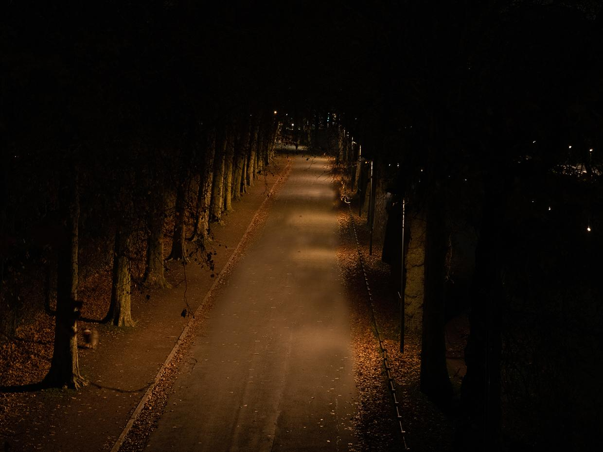 Schréder lighting solutions ensure safety for people while protecting faune and flora at night